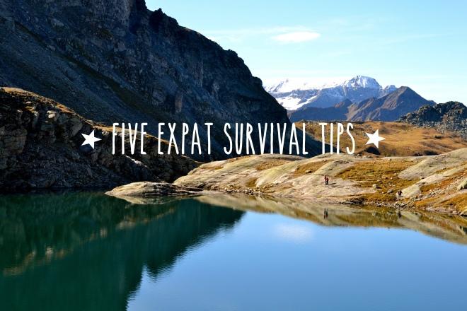 expatsurvival1