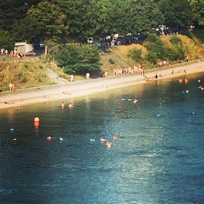 swimming in the rhine basel